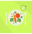 Plate with vegetables and glass of juice vector image vector image