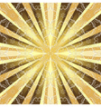 rays and vintage pattern vector image