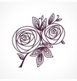 roses stylized flower bouquet hand drawing vector image vector image