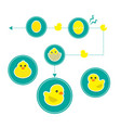 cute icon little duck on white background vector image vector image