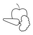 delicious vegetable cartoon vector image vector image