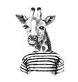 Hand drawn of giraffe hipster vector image