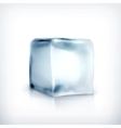 Ice cube vector image vector image