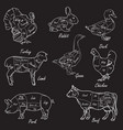 meat symbols vintage cut scheme vector image