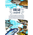 seafood and freshwater fish sketch banner vector image vector image