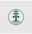 tree logo template vector image vector image