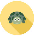 turtle face vector image vector image