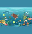 turtle in sea or ocean waters underwater tropical vector image