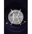 zodiac pisces sign a4 print poster with vector image vector image