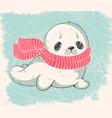 baby seal vector image vector image