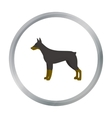 Doberman icon in cartoon style for web vector image vector image