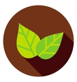 Green Leaves Circle Icon vector image