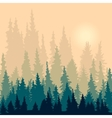 landscape with silhouettes fir-trees vector image vector image