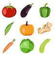 organic fresh set healthy vegetables vector image vector image