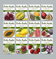 set of 12 exotic fruits posters vector image vector image