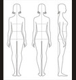 womens body measurements vector image vector image