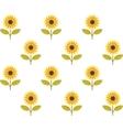 cute sunflower seamless pattern vector image