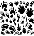 Alien monster footprints vector image vector image