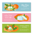 aloe vera cream natural cosmetic soothing and vector image vector image