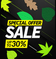 autumn sale offer up to 30 discount vector image vector image