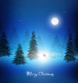Christmas Night Background vector image vector image