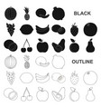different fruits black icons in set collection for vector image vector image