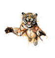 portrait of a tiger jumping from a splash of vector image