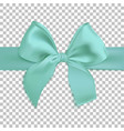 realistic turquoise bow isolated on transparent vector image