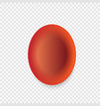 red blood cells vector image