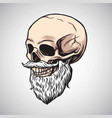 skull bearded moustache drawing vector image vector image