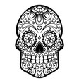 sugar skull isolated on white background day of vector image vector image
