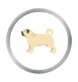 Pug icon in cartoon style for web vector image
