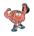 Brawny brain with muscles lifting weights vector image