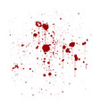 red ink splatter background isolated on white vector image vector image