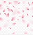 sakura realistic background vector image vector image