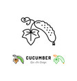 cucumber icon vegetables logo thin line vector image vector image