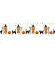 halloween seamless border witch black cat vector image