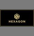 hexagon logo design inspiration vector image vector image