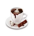 Hot chocolate drink isolated on white vector image vector image