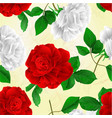 seamless texture rose white and red flower vector image vector image