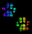 spectrum dot paw footprints icon vector image