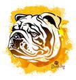 watercolor image head a dog the vector image vector image