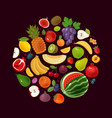 berries and fruits natural food concept vector image