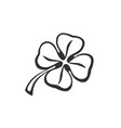 doodle clover vector image