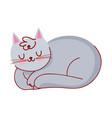 sleeping gray cat domestic pet cartoon isolated vector image vector image