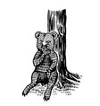 balittle bear sits tree and licks its vector image
