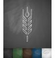 barley icon vector image vector image