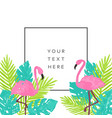 beautiful tropical banner design vector image vector image