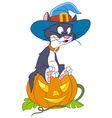 cat on halloween vector image vector image