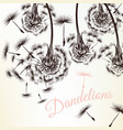 cute background with white engraved dandelions vector image vector image